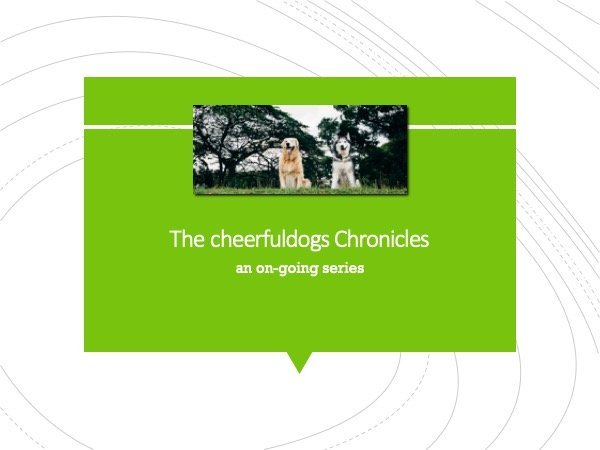 Cheerfuldogs Chronicles