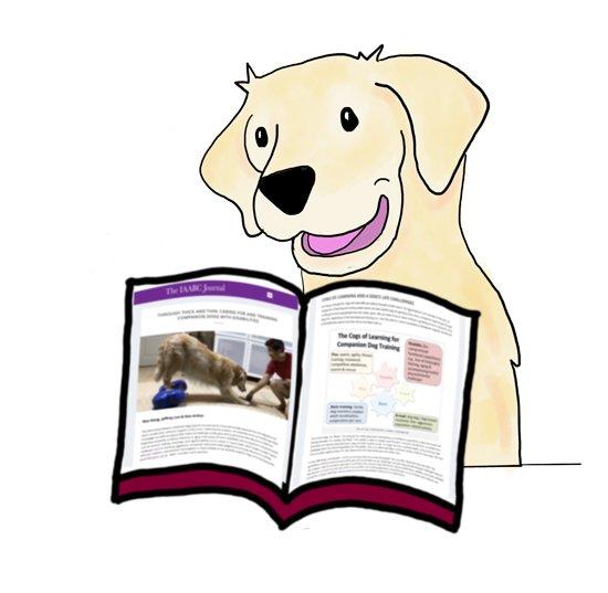 Dog Behaviour Training Tips