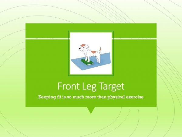 Canine Fitness Front Leg Target