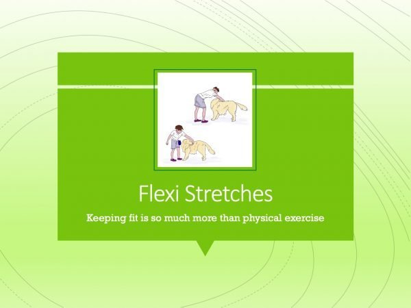 Canine Fitness Flexi Stretches
